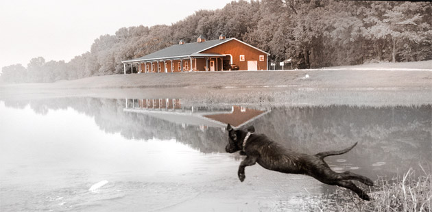 bunkhouse, training pond, and leaping dog